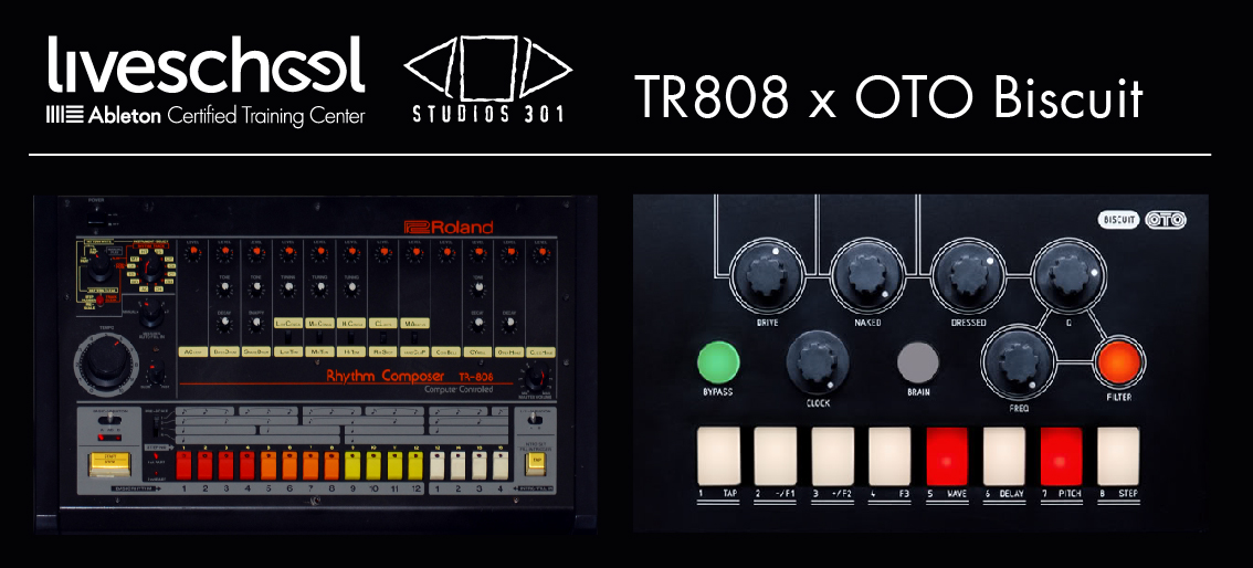 Free Drum Rack: 808 x OTO